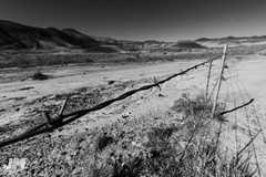 Keep Out B/W (awdftw!) Tags: painted hills adventure outdoors hiking eastern oregon explore fence wide angle landscapes landscape colors sunrise sun warm vibrant color canon sigma 7dmkii jaren morris photography production black white bw contrast cool cold early