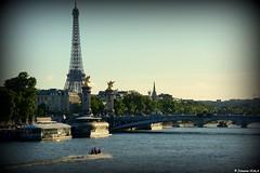 La Tour Eiffel (Johanna Viala) Tags: toureiffel pontalexandreiii pont paris damedefer ladamedefer