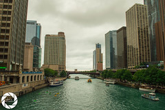 Cloudy days are still great to explore around (Armin M. Media) Tags: chicago architecture cars lambo aston martin mclaren clouds sky navy pier oprah trump downtown bmw rolls royce tesla lp610 lp700 murcielago marina city bean cloudgate