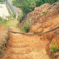Sentier des trophes mondiaux...Stef974 (SLeperlier) Tags: stef974 974 entredeux 97414 sentiers