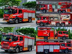 Red Scania Family - 1 (KNL-17) Tags: singapore singaporecivildefenceforce scdf fireservices fireengine rescuepumper pumpladder pl332 scania skrosenbauer scaniap280 firetruck aerialladder al171 metz scaniap310 metzl56 rosenbauer rearmountedplatform towerladder combinedplatformladder cpl171 brontoskylift brontoskyliftf34rlx alp compressedairfoamsystem cafs heavyrescue heavyrescuetender hrt911 fireandrescueoperationssupporttender chemicaltender ct311 panasonic lumixgm1 lumixgvario1232mmf3556 nikon d800 sigma24105mmf4oshsm nikkorafs2470mmf28g frost ost131