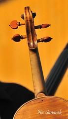 Berliner Philharmoniker (Simpel1) Tags: germany berlin nikon nikond300 berlinerphilharmoniker sirsimonrattle openair 2016 geige violine violin