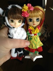 Tuesday Morning has smiled down upon us... (I~Háve~A~Heádcold) Tags: mini pullip hawaiian cow tuesday morning jun planning groove little doll