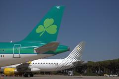 Aer Lingus FTE (18) (crgmry) Tags: aerlingus fte aerlingusfte airbusa320 a320 aeropuertodejerez jerez aeropuerto airport jerezairport flighttrainingeurope
