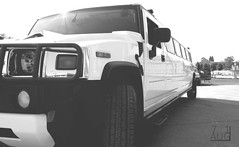 HUMMER XXXL (AUG71) Tags: hummer car xxl xxxl limo stretch auto rally hochzeit service lang berlnge weis schwarz gros breit party