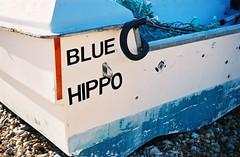 Blue Hippo - Walmer, Kent (jcbkk1956) Tags: worldtrekker film 35mm analog zeiss ikon contina agfa200 walmer deal kent seaside boat zonefocus stern 45mmf35