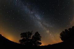 (Jakob Stoye) Tags: brandenburg havelland magdeburg milchstrase nacht nachtaufnahmen natur orte sachsenanhalt sterne