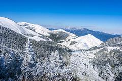 Harry_30841,,,,,,,,,,,,,,,,,,,,,,Hehuan Mountain,Taroko National Park,Snow,Winter (HarryTaiwan) Tags:                      hehuanmountain tarokonationalpark snow winter  mountain     harryhuang   taiwan nikon d800 hgf78354ms35hinetnet adobergb