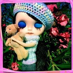 Teddy Dreams!