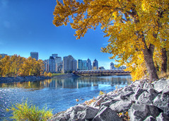 Peace Bridge in Autumn (njchow82) Tags: autumn calgary landscape cityscape scenic alberta hdr bowriver princesislandpark lumen peacebridge inspiredbylove tonemapping photomatrix scenicsnotjustlandscapes nancychow canonpowershotsx30is