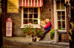 The Dog and the man (Wameq R) Tags: old light music building castle netherlands leaves architecture hair afternoon delft crate hdr blinkagain