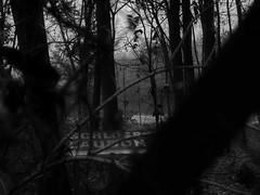 """""""Schlo Laudon"""" - """"Laudon Castle"""" (hedbavny) Tags: vienna wien 2 two abstract castle night austria abend nacht digitalart deux abstraction due zwei abends penzing sehenswrdigkeit dva zwo laudon digitalabstract 1140 invi schlos sterreichaustria mauerbach hadersdorf schlosslaudon mauerbachstrase htteldorffotobearbeitung worldthroughmyeyesmonochrmonday"""