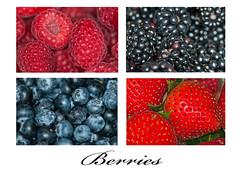 Berries (Muhammad Al-Qatam) Tags: blue red black macro strawberry berries blackberry blueberry raspberry kuwait d300 105mmvrf28 nikond300 alqatam malqatam