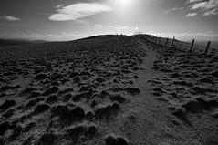 Heading up Waterstein Head, Skye (James_at_Slack) Tags: bw skye grass fence scotland shadows path walk tufts neist neistpoint watersteinhead