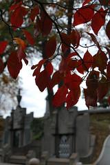 Autumn in Laurel Hill Cemetery (James Mundie) Tags: autumn cemeteries philadelphia cemetery grave graveyard death memorial tomb mausoleum mementomori boneyard vanitas cementerios philadelphiapa cimiteri mundie laurelhillcemetery cimetires copyrightprotected friedhoefe jamesmundie jamesgmundie profjasmundie jimmundie copyrightjamesgmundieallrightsreserved