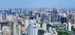 Concrete City (Brady Fang) Tags: china park city travel summer green tower skyline skyscraper asia cityscape shanghai citylife aerialview illuminated glowing crowded spotlit urbanscene traveldestinations famousplace internationallandmark highangleview