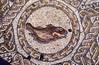 Mosaico pez Mérida (Rafael Jiménez) Tags: españa archaeology spain mosaico 1989 slides pavimento mérida extremadura paviment diapositivas arqueología imperioromano arteromano romaantigua aboutiberia