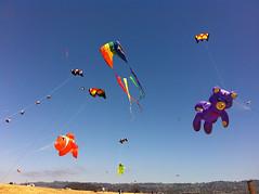 IMG_1324 (vjaxxon) Tags: summer kite childhood festival berkeley flying wind air crowd flight free iphone
