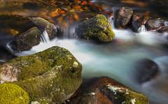 Plunge pool palette (snowyturner) Tags: longexposure river moss rocks cascades dartmoor plungepool shaughprior polariser hoomeavy tenstopper