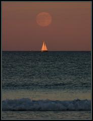 2016-07-19 Moonrise at Beach (120) (Paul-W) Tags: ocean blue sunset sky seagulls water clouds sailboat sand surf waves purple wells moonrise sail ogunquit 2016 northogunquitbeach