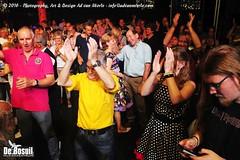 2016 Bosuil-Het publiek bij de 30th Anniversary Steady State 95