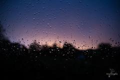 Window Raindrops (Wilhelm v. Kallmnz) Tags: wassertropfen fenster tropfen