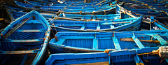 Blue Boats (Jan Herremans) Tags: maroc morocco harbour fishing blue janherremans rowing