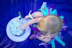 dainty smash (Michael Kenan) Tags: baby girl 1 year old one cake smash purple tutu