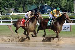 Saratoga, NY (mattsprow) Tags: racing saratoga nyra thoroughbred horses jockey