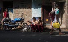 Streets of Chennai (Raghunathan Anbazhagan) Tags: nationalgeographic natgeo incredibleindia colors streetphotography street cat play kids people madras chennai tamilnadu india