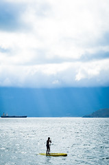 Equilbrio (Samu El Ribeiro) Tags: ilha bela sp sao paulo brasil mar beach praia animal natureza esporte paisagem calma amor paz viagem litoral