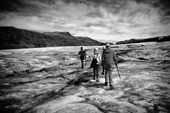 Glacial Trek (michael.mu) Tags: leica m240 leicasummicron35mmf20asph iceland glacier arcanumglaciertours slheimajkull trek hike nordicvisitor silverefexpro monochrome bw blackandwhite