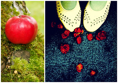 If you see the magic in a fairy tale, you can face the future. (mintukka) Tags: apple shoes dippy diptych autumn fall redapple stilllife whimsical redroses roses rose feet fairytale