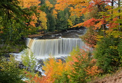 Tahquamenon Falls in Autumn (Cole Chase Photography) Tags: autumn fall canon landscape waterfall october fallcolor michigan falls upperpeninsula autumncolor t3i tahquamenonfalls tahquamenonfallsstatepark uppertahquamenonfalls