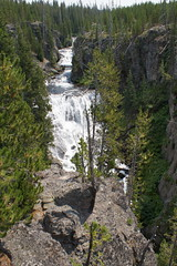 Western U.S. Vacation 2012 (MacabreX) Tags: tree water rock river waterfall yellowstonenationalpark yellowstone wyoming 2012 keplercascades