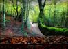 """EL OTOÑO EN LOS BOSQUES - Nuestros bosques // AUTUMN IN THE FOREST - Our forests (ANDROS images) Tags: andros images photos fotos fotoandros """"androsphoto"""" """"fotoandros"""" lugares places """"sitiosespeciales"""" """"franciscodomínguez"""" interesante naturaleza """"naturalezaviva"""" """"amoralanaturaleza"""" """"imágenesdenuestromundo"""" """"sólotenemosunatierra"""" """"planetatierra"""" """"amarlatierra"""" """"cuidemoslatierra"""" luz color tonos """"portierrasespañolas"""" """"nuestro """"unahermosatierra"""" """"reflejosdeluz"""" pasión viviendo """"pasiónporlafotografía"""" miradas fotografías """"atravésdelobjetivo"""" """"elmundoenimágenes"""" pictures androsphoto photoandrosplaces placesspecialsites interesting differentnaturelivingnature loveofnature imagesofourworld weonlyhaveoneearthplanetearth foracleanworldlovetheearth carefortheearth light colortones onspanishterritoryourworld abeautifulearth lightreflection """"living passionforphotographylooks photographs throughthelens theworldinpicturesnikon """"nikon7000"""" león """"provinciadeleón"""" """"fotógrafosdenaturaleza"""" """"imágenesdenaturaleza"""" """"lavida"""" """"elmar"""" """"losocéanos"""" """"costacantábrica"""" otoño vegabaño hayedos """"valledesajambre"""" """"caminodevegabaño"""" """"picosdeeuropa"""""""