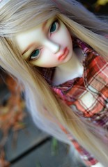 (shibya(   ` )) Tags: autumn ball doll little monica bjd lm jointed irin