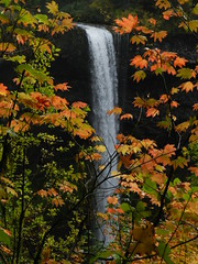 South Falls (outdoorPDK) Tags: oregon silverfallsstatepark southfalls