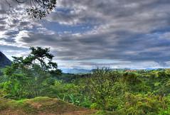 Loma Bonita - Selva Lacandon hdr (rohaca) Tags: mexico mesoamerica selva mexique chiapas hdr mexiko selvalacandona selvalacandon ixcan rohaca chiapashdr robertohallcapek