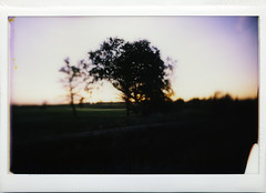 the green at sunset (Martin<3s4x5) Tags: camera sunset canada green fall film by club golf lens for fuji with view country omega wide perspective large shift front swing f45 iso shutter convergence sw 4x5 format keystone regina saskatchewan parallax monorail nikkor rise tilt 800 1500 exposed holder ratio instax toyo wascana correction 75mm converging aspect effective 45f synchrocompur ~20mm 106x84cm