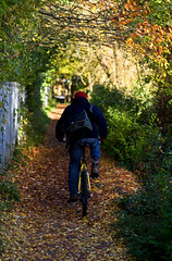 bike path (robwiddowson) Tags: autumn bicycle ride tube foliage oxford lone behind pathway suberbs