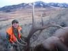 Montana Elk Hunt - Bozeman 6