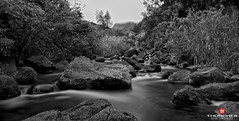 Sweetwater (Thncher Photography) Tags: longexposure bw hawaii blackwhite nikon maui le f22 fullframe fx nationalgeographic d800 iaovalley wailuku iaostream nikond800 nikkor1635mmlens niksilverefexpro20