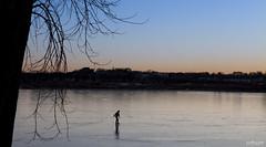 Skater at Dusk | 017/365 2013 (mfhiatt) Tags: winter lake ice pond midwest dusk skating iowa skater day17 desmoine day17365 3652013 mfhiatt 2013inphotos michaelfhiatt 365the2013edition 17jan13 2013michaelfhiatt