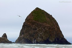 (JeffGoldstein) Tags: scenic cannonbeach oregon ocean pacificnorthwest nature beautiful breathtaking canon 5dmkii 85mm jeffgoldstein portland pdx