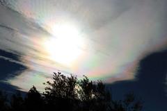 cloud iridescence (Marlis1) Tags: cloud sun wolke cloudiridescence weatherphotography irisierend canoneos1000d catalunyaspainmarliestortosa
