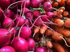 radishes & carrots (christaki) Tags: nyc radish carrots unionsquare greenmarket farmersmarket
