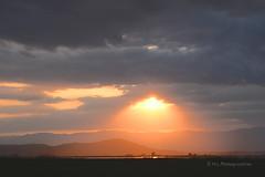Magie d'un soir d't (H..L) Tags: poblenou delta ebro espagne coucher soleil soir lumire nikon livolsi d7000