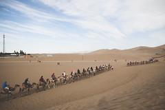 IMG_6861 (chungkwan) Tags: china chinese gansu province weather dry sands canon canonphotos travel world nature landmark landscape   dunhuang  crescent crescentlake  mingsha mingshamountain  camels silkroad