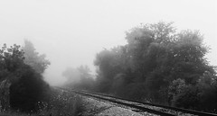 Foggy Tracks (3) (edanalog) Tags: bw fog railroad tracks landscape